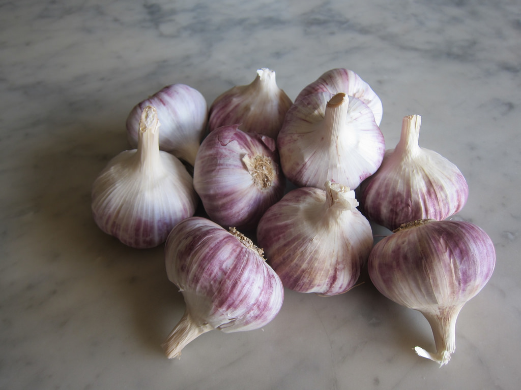 Good Garlic at Last! post image